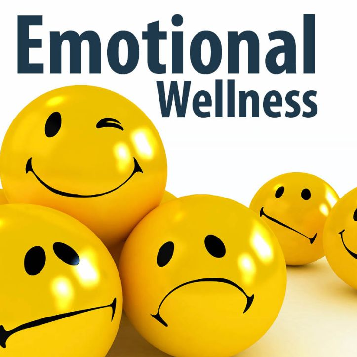 Wellness-Website2